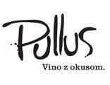 Pullus/